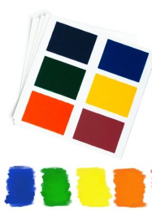 Paleta de 6 colores sobre fondo blanco con muestras de los colores activados abajo (morado, azul verde, amarillo, naranjo, rojo).